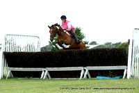 Steeplechase and Hurdle