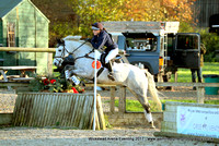 Horse-Events Arena Eventing Wickstead - 12/11/17